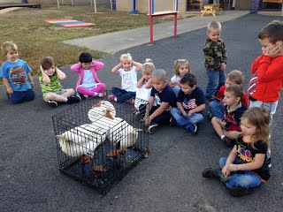 students observing geese