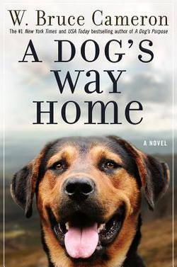 1517251543-a_dog_s_way_home