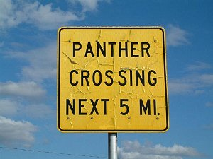 Panther Crossing Next 5 miles sign