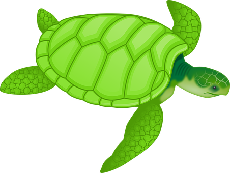 Click here to go to turtle dash