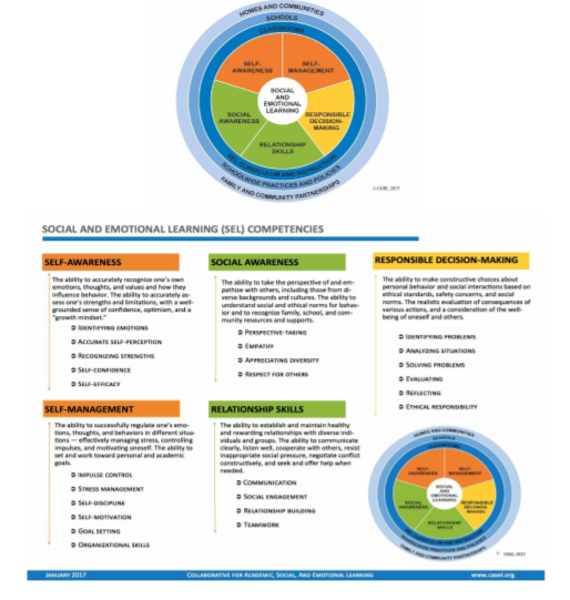 Basic Social & Emotional Learning Competencies