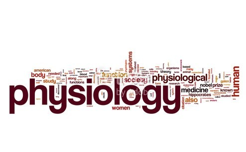 Content_1538359361-physio
